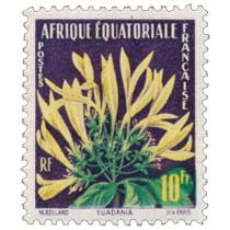 Euadania Afrique Équatoriale Française