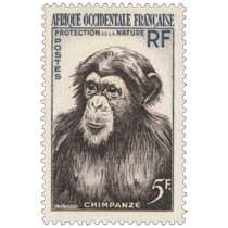 Afrique Occidentale Française - Protection de la nature - Chimpanzé