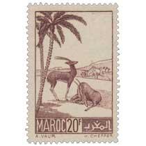 1939 Maroc - Gazelles