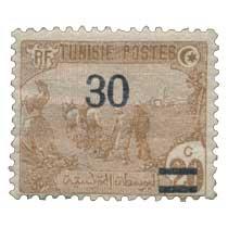 Tunisie - Laboureurs
