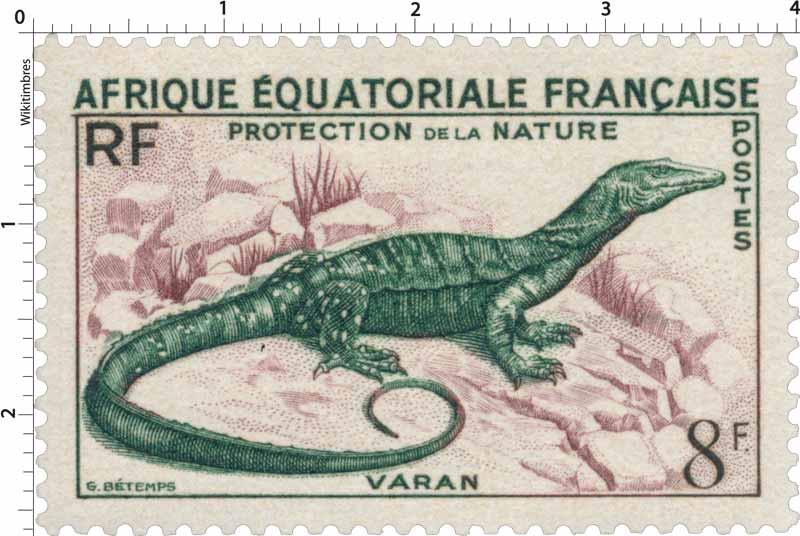 Protection de la nature Varan Afrique Équatoriale Française