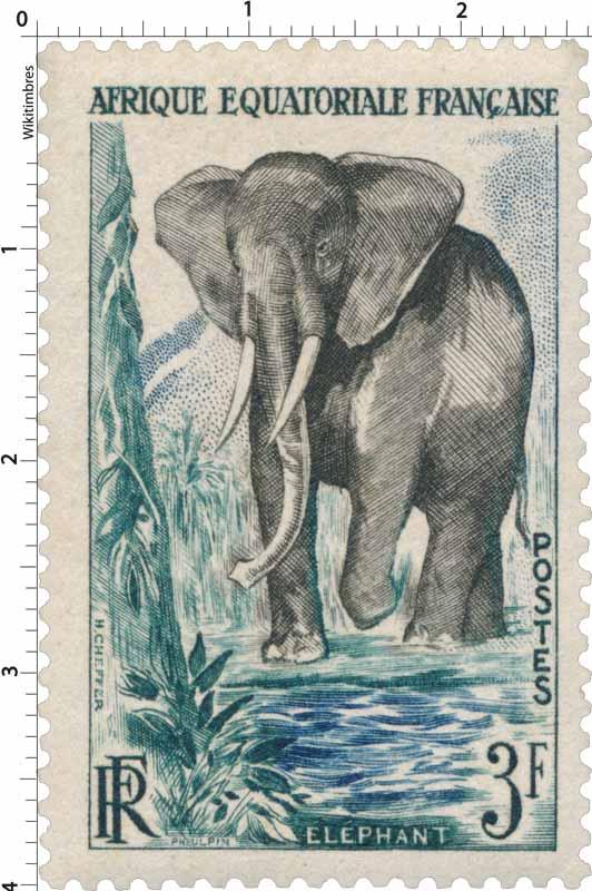 Éléphant Afrique Équatoriale Française