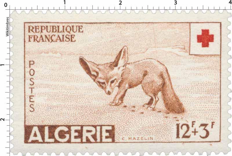 Algérie - Fennec