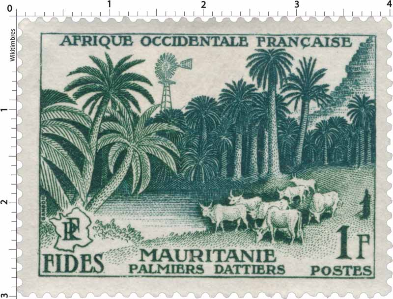 Afrique Occidentale Française - F.I.D.E.S. - Palmiers-dattiers - Mauritanie