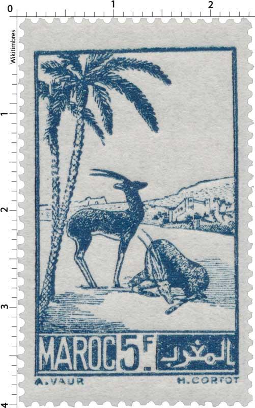 1945 Maroc - Gazelles