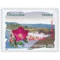 2009 Picardie La rose