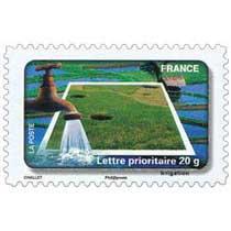 2010 Irrigation