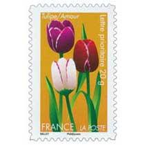 Tulipe/ Amour