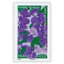 Violette / Modestie