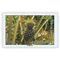 ananas Sierra Léones
