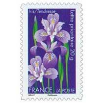 Iris / Tendresse