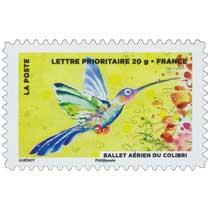 2013 Ballet aérien du colibri