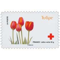 2014 Tulipe