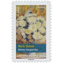 2015 Marie Duhem - Reines marguerites