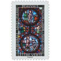 2016 Structure et lumière . Cathédrale Saint-Pierre . Beauvais