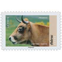 2017 Aubrac- Vache