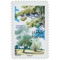 2018 Frêne élevé - Fraxinus excelsior