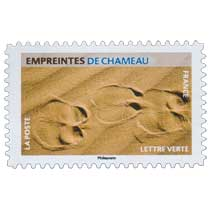 2021 Empreintes de chameau