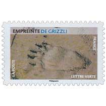 2021 Empreinte de grizzli
