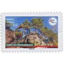 2021 France - Terre de tourisme - Forêt de Fontainebleau