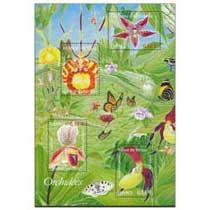 2005 Orchidées