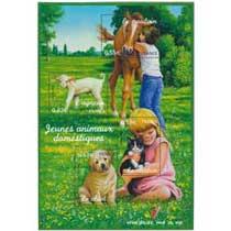 2006 Jeunes animaux domestiques