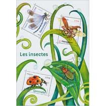 2017 Les insectes - Demoiselle, Hanneton, Carabe, Coccinelle