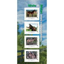 2015 Collector Mule et Mulet