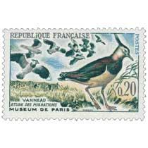 VANNEAUX ÉTUDE DES MIGRATIONS MUSÉUM DE PARIS