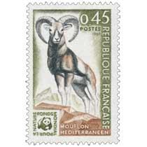 1969 FONDS MONDIAL POUR LA NATURE MOUFLON MÉDITERRANÉEN