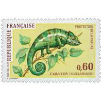 1971 PROTECTION DE LA NATURE CAMÉLÉON (ÎLE DE LA RÉUNION)