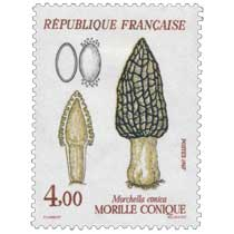 1987 MORILLE CONIQUE Morchella conica
