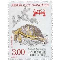 1991 LA TORTUE TERRESTRE Testudo hermanni
