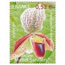 2005 Orchidée Mabel Sanders Paphiopedilum Mabel Sanders