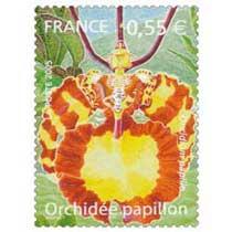 2005 Orchidée Papillon Oncidium papilio
