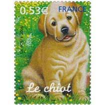 2006 Le chiot