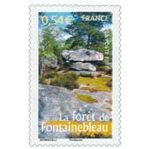 2007 La forêt de Fontainebleau