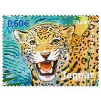 2007 Jaguar