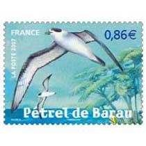 2007 Pétrel de Barau