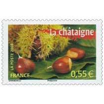 2008 La châtaigne