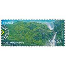 2008 BRÉSIL FORÊT AMAZONIENNE