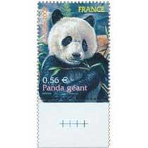 2009 Panda géant