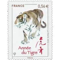 2010 Année du tigre