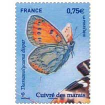 2010 Cuivré des marais Thersamolycaena dispar