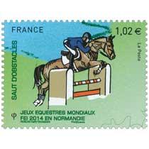 2014 Jeux Équestres Mondiaux FEI en Normandie SAUT D'OBSTACLES