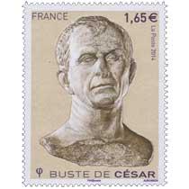 2014 Le buste de César