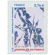 2015 ASSEMBLÉE NATIONALE - Liberté Egalité Fraternité