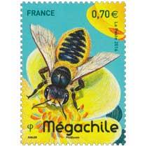 2016 Mégachile