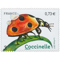 2017 Coccinelle