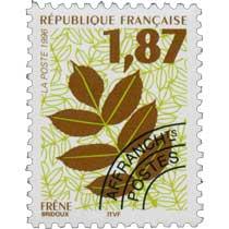 1996 FRÊNE